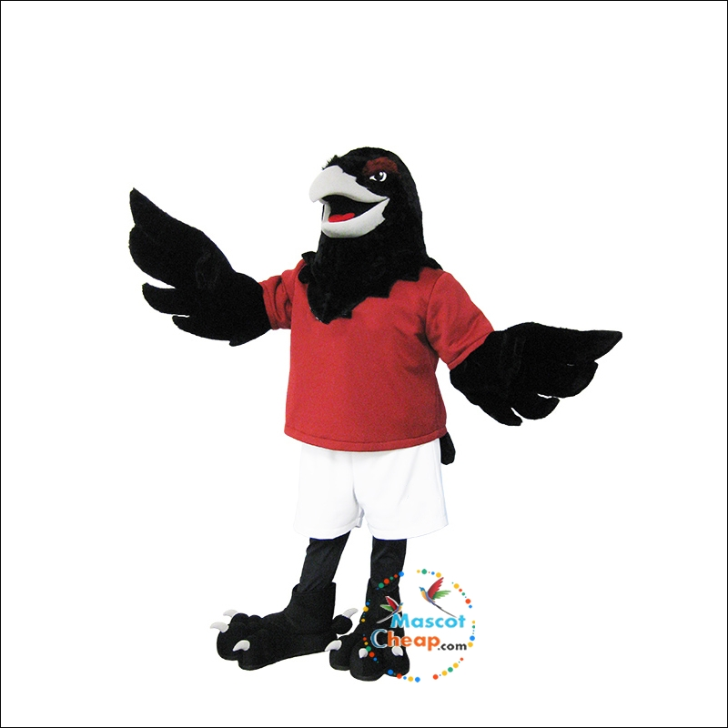 Raven Mascot Costume